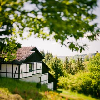 "Ferienhaus ""Ahorn"" 3 - Daun"