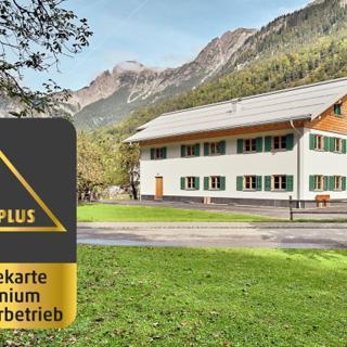 Arlberg Öko Ferienwohnung Roggelskopf - Innerbraz