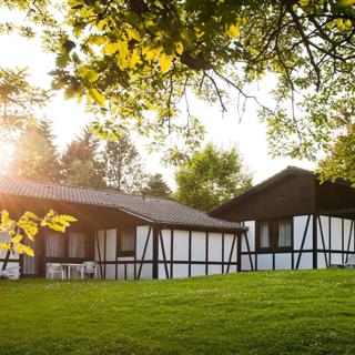 """Ferienhaus """"Kastanie"""" 34 - Daun"""