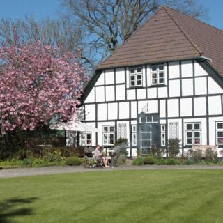 Muschelkorb - Todendorf