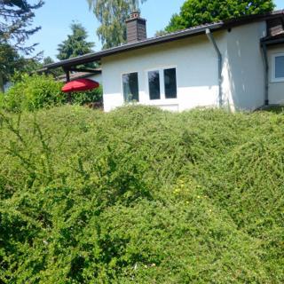 Ferienhaus Eifelurlaub - Biersdorf am See