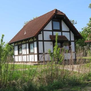 Ferienhaus Deichgraf 65 im Feriendorf Altes Land - Ferienhaus Deichgraf 65 mit Haustier - Hollern-Twielenfleth