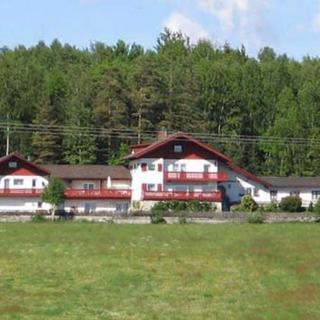 Landhaus Waldeck Georg Schreiner - Ferienwohnung 2, 60qm, 2 Schlafräume, max. 4 Personen - Regen