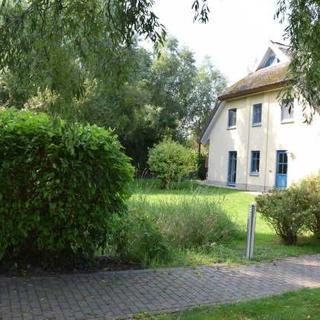 Reetdachhaus Holunder 4 mit Kamin und Sauna - REH Holunder 4 - Poseritz
