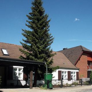 Ferienwohnungen in Altefähr   WE620 - Fewo IV Alte Schmiede - Altefähr