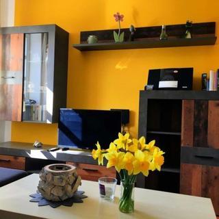 Ferienresidenz Rugana Wohnung B44 - 2-Zimmer-Ferienwohnung - Dranske