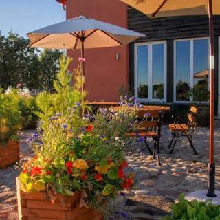 großzügige FeWo mit Terrasse im Grünen, 2-3 Schlafzimmer fü - Ferienwohnung 100 m² - Oberuckersee