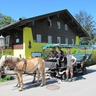 Ferienwohnungen * * * LANDHAUS GERUM - Terrassen-Ferienwohnung GILGEN - unsere beliebteste Wohnung ! - St. Wolfgang im Salzkammergut