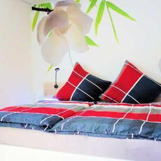 Silberburg - größeres Doppelzimmer mit Doppelbett - Bad Wildbad