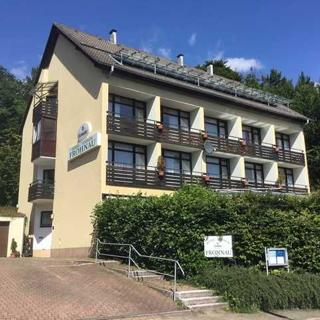 Panorama Hotel Pension Frohnau - Standard Doppelzimmer - Bad Sachsa