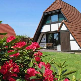 Ferienhaus Winnetou im Feriendorf Altes Land - Ferienhaus Winnetou - für 4 Personen - Haustier erlaubt - Hollern-Twielenfleth