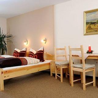 Ferienwohnungen Altenberg ERZ 060 - Ferienzimmer ERZ 063 - Altenberg OT Rehefeld-Zaunhaus