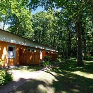 Ferienpark Bernstein - Ferienwohnung Seestern 3 mit zwei Schlafzimmern - Dranske