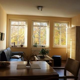 Haus Bucheneck, Apartment WE 11 Goerick GM 69311 - Haus Bucheneck, Apartment WE 11 Komfort - Graal-Müritz
