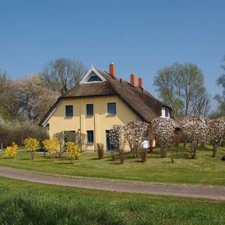 Sonniges Reetdachhaus - Malve Eins - Poseritz