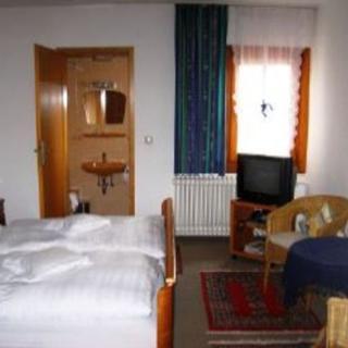 Goldner Engel, Restaurant - Hotel - Metzgerei - Standardeinzelzimmer - Laudenbach