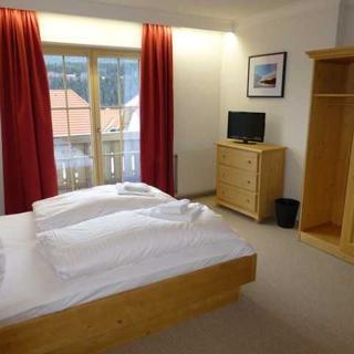 Apparthaus Sonnenberg - One Bedroom Apartment with Balcony - Haus im Ennstal