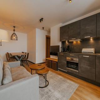 Apartment Typ J im Alpin Resort Montafon - Apartment Typ J im Alpin Resort Montafon (mit Haustier) - Gargellen