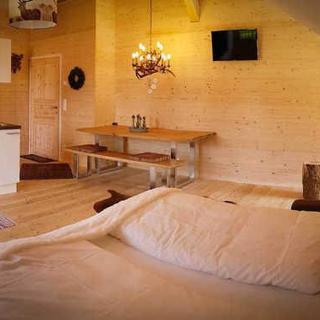 Steirer Apartment - Steirer Apartment mit kleinem Balkon - Semmering