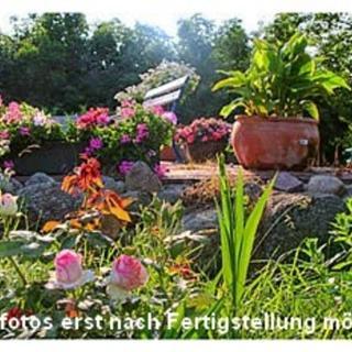 Ferienwohnungen im Sonnenhaus - Regenbogen/Seestern - Putbus
