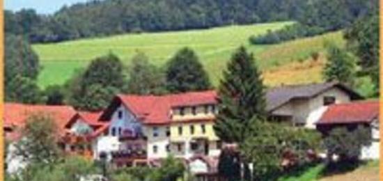 Ferienwohnungen Ferienhauser Mit Whirlpool Im Odenwald